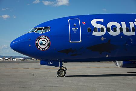 Αποτέλεσμα εικόνας για Southwest Airlines releases shark week-themed aircraft for takeoff this summer