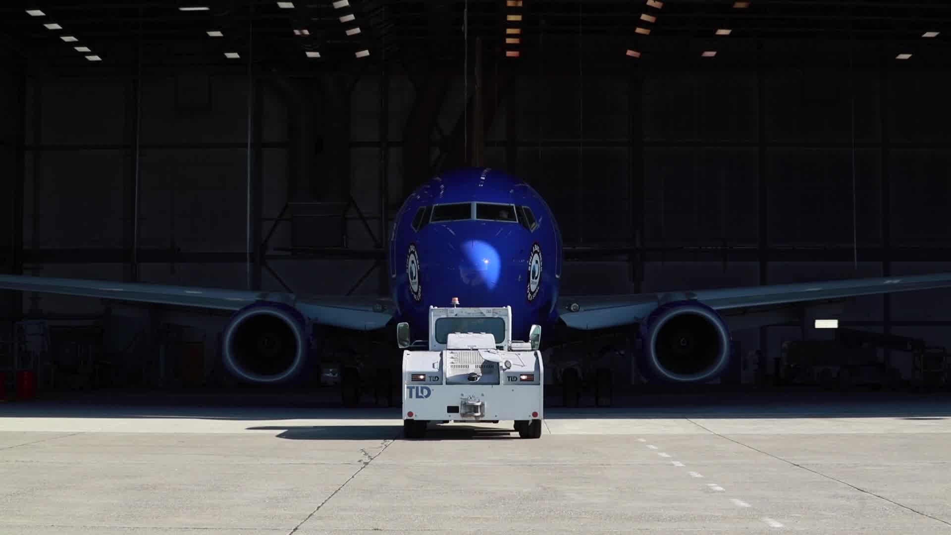 Behind The Scenes Making Of Southwest Airlines Shark Week Themed Boeing 737 700